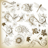 Collection of swirl floral vector elements for design — Stock Vector
