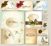 Luxury invitation and gift cards with floral elements and bows — Stok Vektör