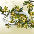 Background with realistic vector olives and olive oil on white — Stock Vector
