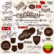 Set of vector calligraphic signatures, ribbons and labels premi — Stock Vector