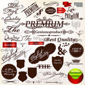 Set of vector calligraphic signatures, ribbons and labels premi — Stockvector