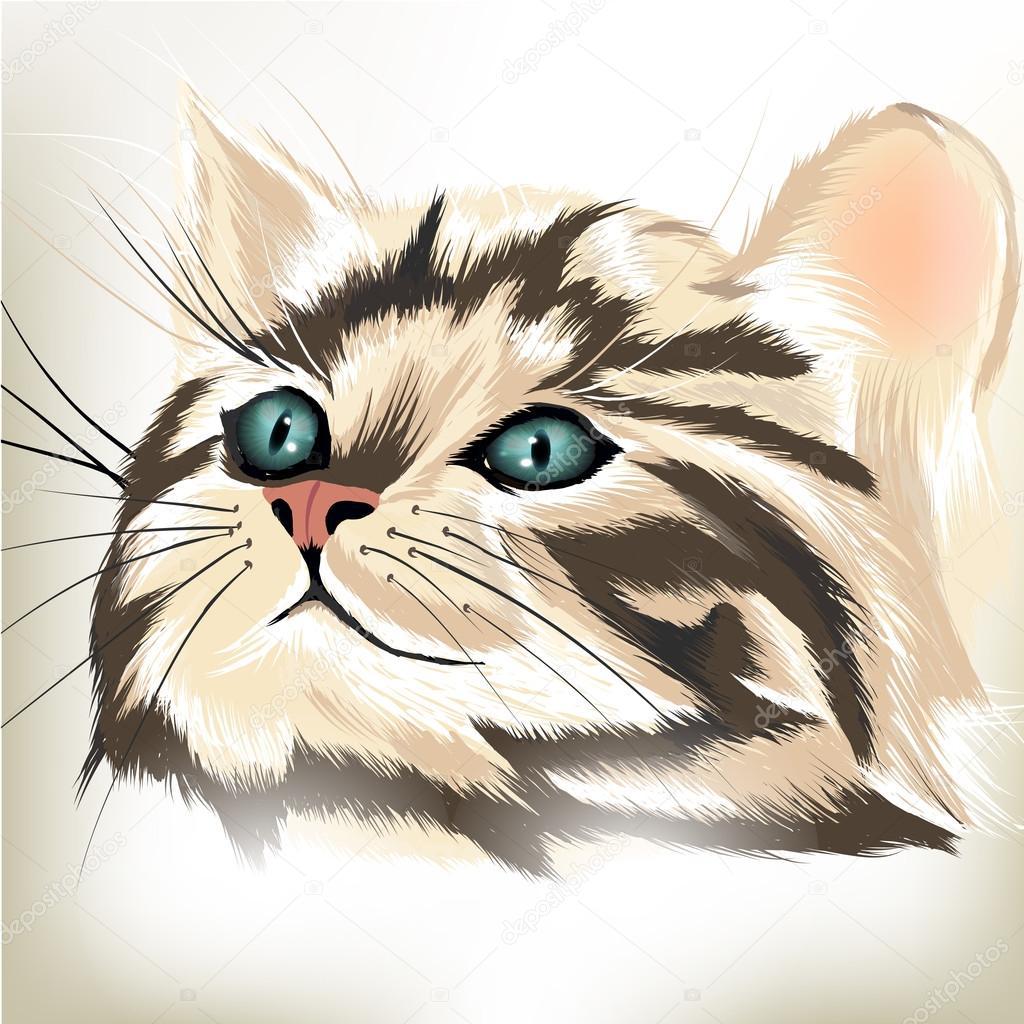 蓝色的大眼睛的可爱条纹猫的艺术矢量肖像