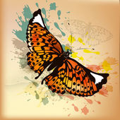 Elegant vintage design with orange butterfly and ink splats — Stock Vector