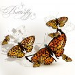Fashion elegant design with  yellow orange butterflies on a whit — Векторная иллюстрация