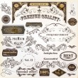 Collection of vintage  vector design elements and labels — Stock Vector