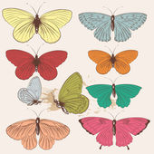 Set of vector hand drawn butterflies in vintage style — Stock Vector