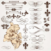 Vector set of vintage calligraphic design elements and page deco — Stok Vektör