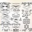 Collection of vector retro design calligraphic  elements and pag — Imagens vectoriais em stock