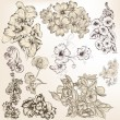 Collection of vector detailed hand drawn flowers for design — Stok Vektör
