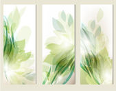Abstract floral backgrounds set — Stock Vector