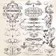 Collection of calligraphic decorative elements for design — Vecteur #31814847