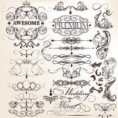 Collection of calligraphic decorative elements for design — Stock Vector