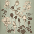 Collection  of vector vintage hand drawn roses for design — Imagens vectoriais em stock