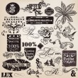 Vector set of vintage decorative elements and labels for design — Stock Vector