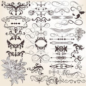 Collection of vector vintage decorative and calligraphic elemen — Stock Vector