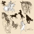 图库矢量图片: Collection of vector detailed horses for design