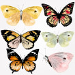 Collection of vector realistic butterflies for design — Image vectorielle