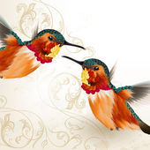 Beautiful vector humming birds with ornament — Stock Vector
