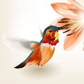 Beautiful vector realistic humming bird with lily — Stock Vector