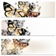 Abstract brochures set in floral style with butterflies — Stock vektor #35902757