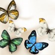 Fashion vector background with butterflies — Stock Vector #36899833