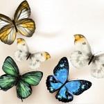 Мода Векторный фон с бабочками — Cтоковый вектор #36899833