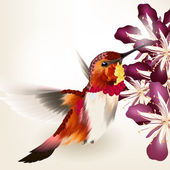 Beautiful vector realistic humming bird with flowers — Stock Vector