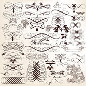 Collection of calligraphic vector design elements and page decor — Stock Vector