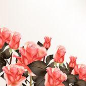 粉色玫瑰背景 — 图库矢量图片