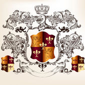 Heraldic design with coat of arms and shield — Vector de stock