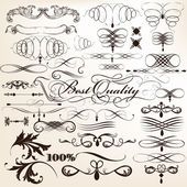 Collection of vector decorative flourishes in vintage style for — Stock Vector