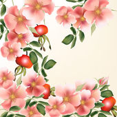 Beautiful  vector background with wild  roses — Stock Vector