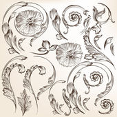 Collection of vector decorative swirl floral elements for design — Stock Vector
