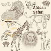 Collection of  vector  hand drawn African animals  in vintage st — Stock Vector