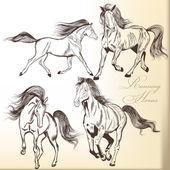 Set of vector hand drawn horses — Stock vektor