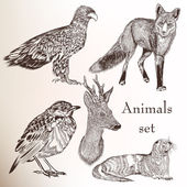 Set of hand drawn animals — Stock vektor