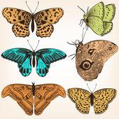 Raccolta di vector farfalle disegnate a mano — Vettoriale Stock