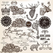 Set of vector decorative hunting and floral elements in vintage  — Stock vektor