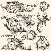 Collection of vector vintage decorative flourishes — Stock Vector