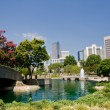 Marshall Park in Charlotte, NC — Stock Photo