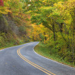 Autumn Country Road - Stock Photo