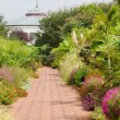 Canal Garden and Sidewalk — Stock Photo