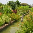 Canal Garden at Daniel Stowe — Stock Photo