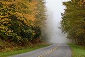 Foggy Road — Stock Photo