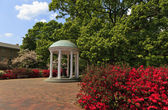 De oude put in chapel hill — Stockfoto