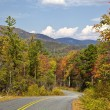 Gorges State Park Road — Stock Photo