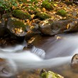 Flowing Water — Stock Photo #24706483