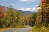 Gorges State Park Road — Stock fotografie