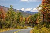 峡谷の州立公園の道 — ストック写真