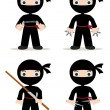 Ninja set — Stock Photo